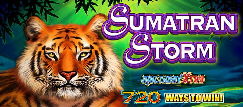 Sumatran Storm Slot Machine