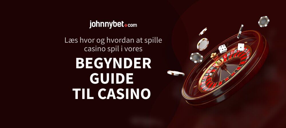 Begynder Guide til Casino