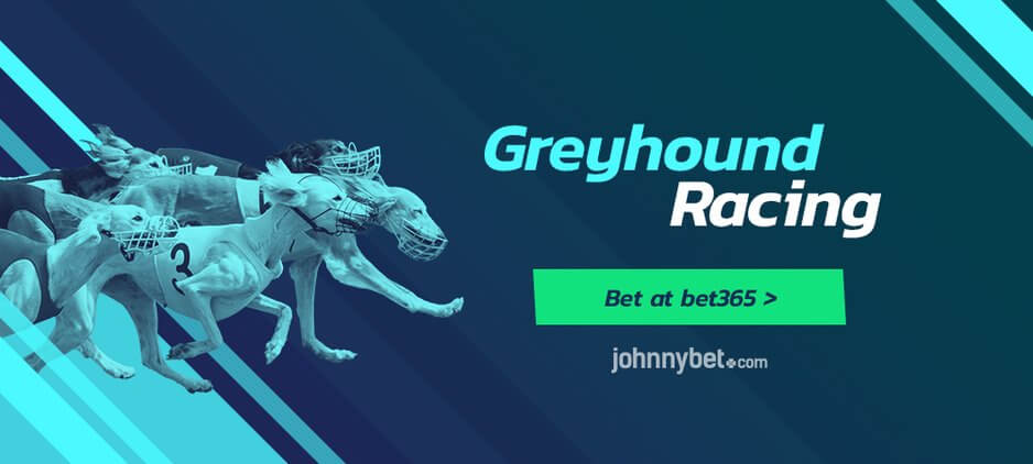 Free Greyhounds Betting Tips