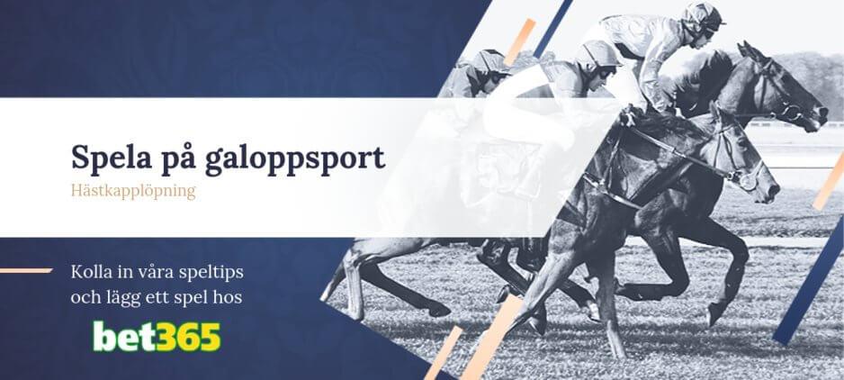 Galoppsport betting bet365