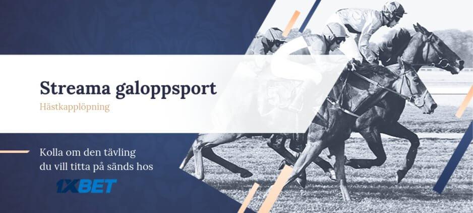 Galoppsport streaming 1xbet