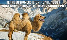 Dog camel weird animal memes