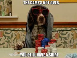 Dog game over poker meme