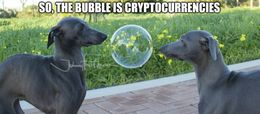 Cryptocurrencies memes