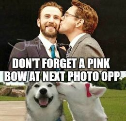 Pink bow memes