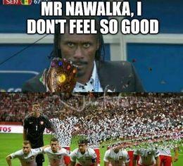 Nawalka funny memes