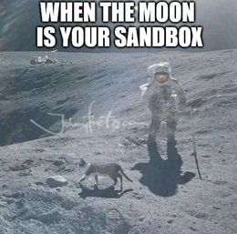 Your sandbox memes