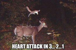 Heart attack memes