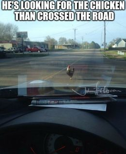 Crossed the road memes