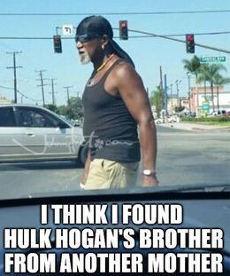 Hulk hogan memes