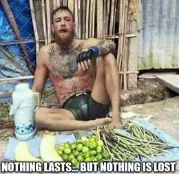 Nothing is lost memes