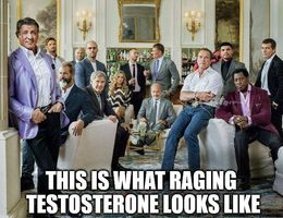 Raging testosterone memes