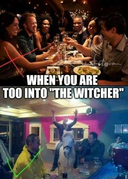 The witcher memes