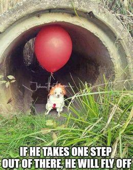 One step memes