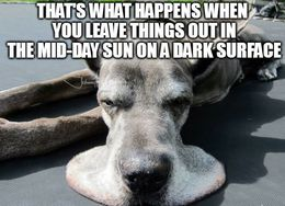 Dark surface memes
