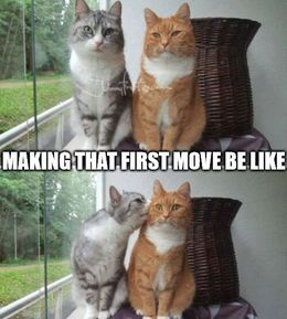 First move memes