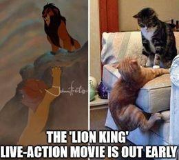 Lion king live action memes