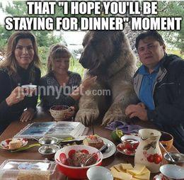 Staying for dinner memes