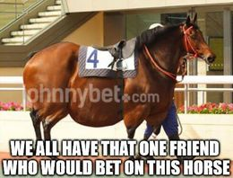 Bet on this horse memes