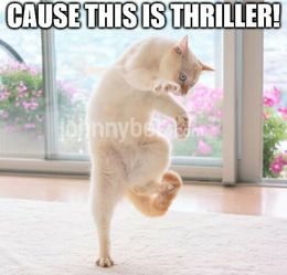This is thriller memes