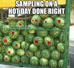 Hot day memes