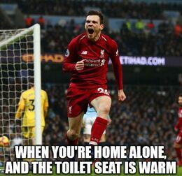 Toilet seat memes