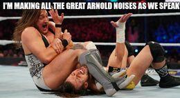 Arnold noises memes