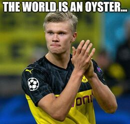 Oyster memes