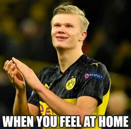 Feel at home memes