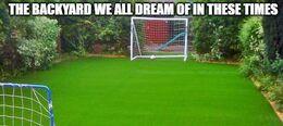 We all dream memes