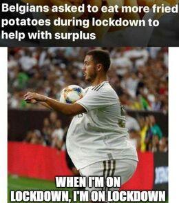 On lockdown memes