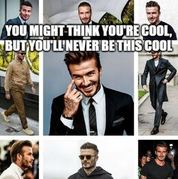 This cool memes