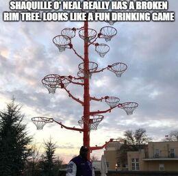 Rim tree memes