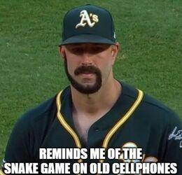 Snake game memes