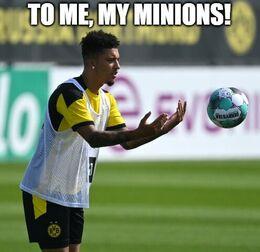 My minions memes