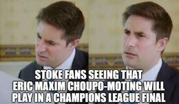 Stoke fans memes