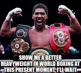 World boxing memes
