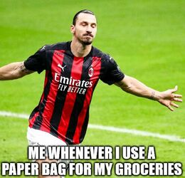 Paper bag memes