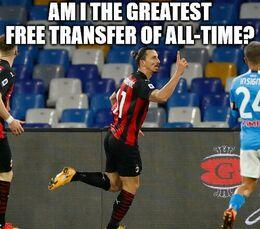 Free transfer memes