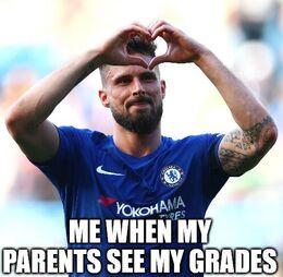 My grades memes