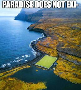 Paradise memes