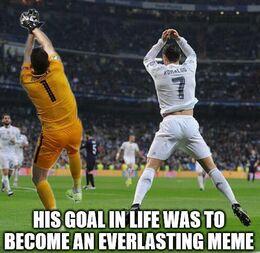 Goal in life memes