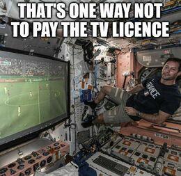 Tv licence memes