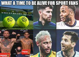 Sport fans memes