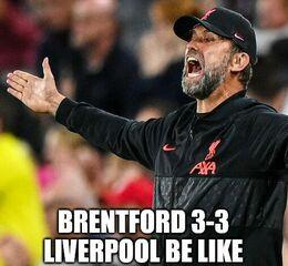Brentford memes