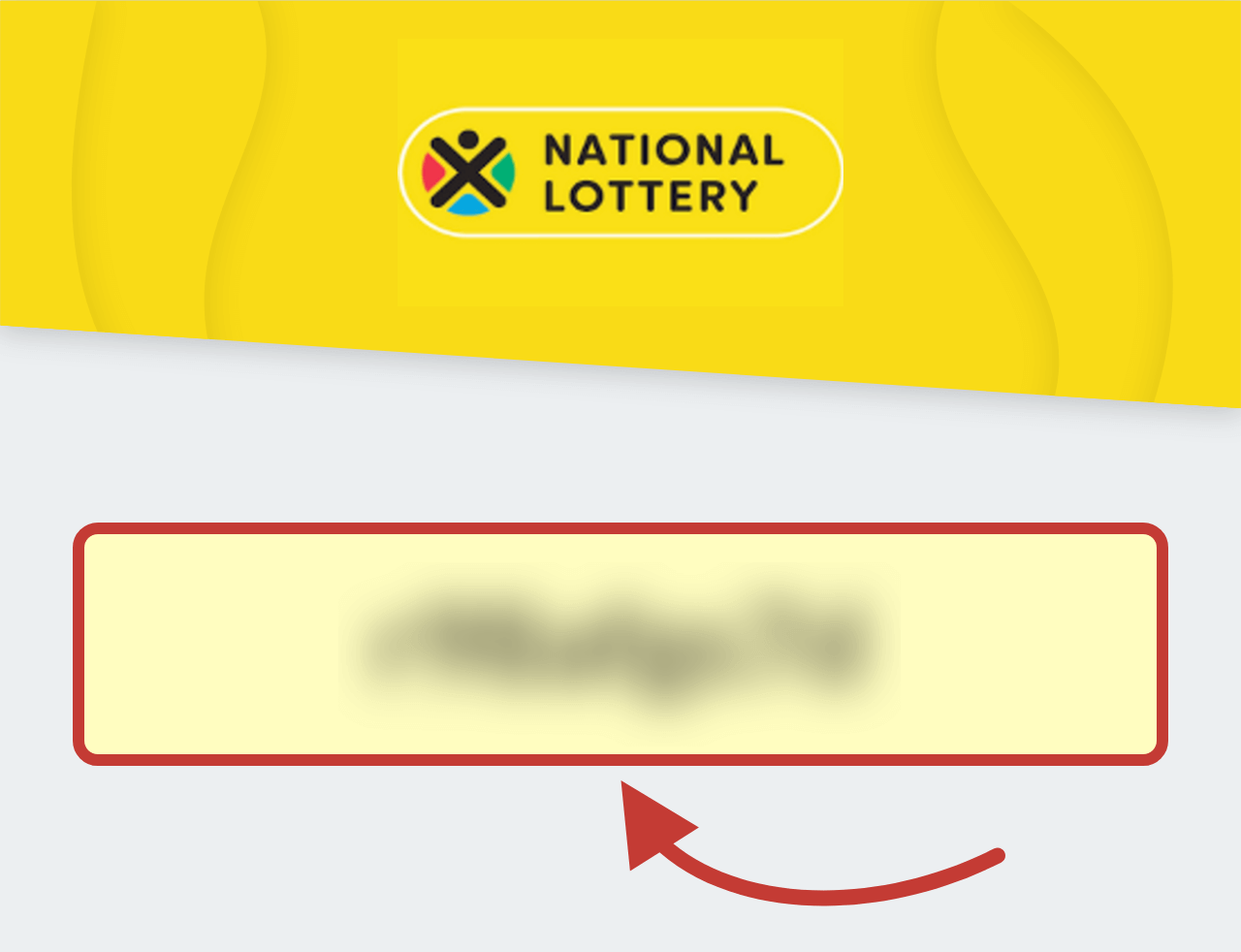 South African National Lottery Bonus Code