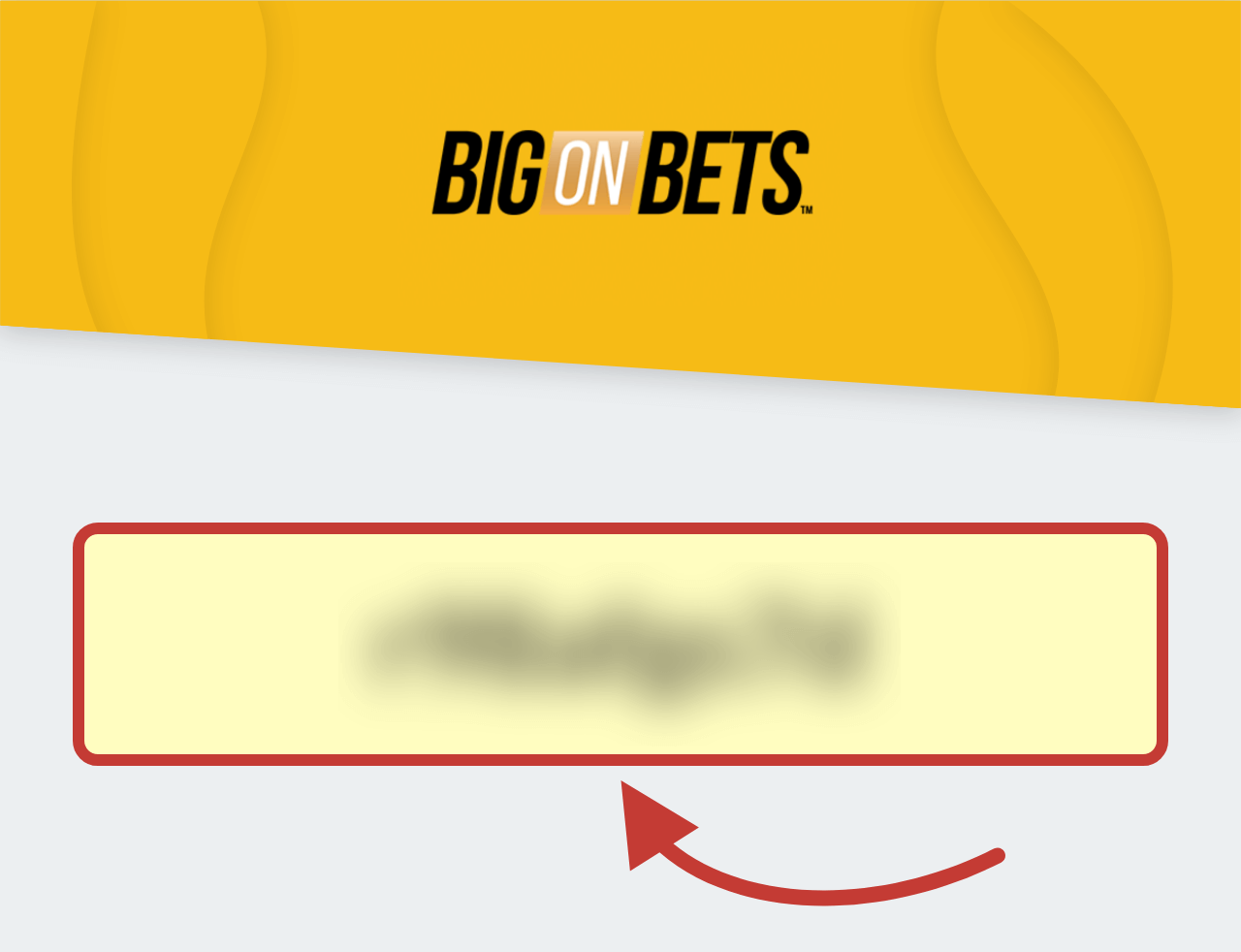 Big on Bets Casino Promo Code