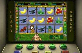 Онлайн игровые автоматы обезьяны бесплатные видео рулетка онлайн без регистрации 18