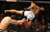 Darmowe typy na UFC Fight Night 64