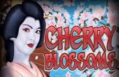 Wild Cherry video slot